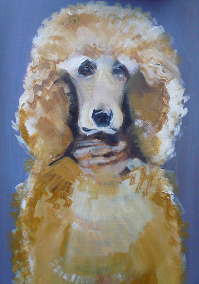 Sally Muir A Dog A Day