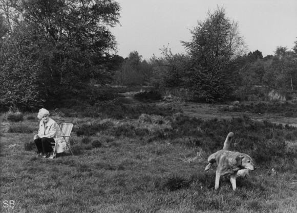People and Dogs © Shirley Baker