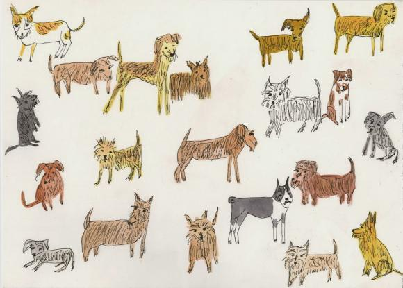 Twenty Terrific Terriers © Vivienne Strauss