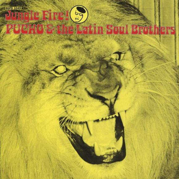 Pucho & the Latin Soul Brothers