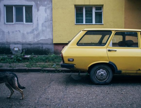 Half, 2012 © Tamás Hajdu