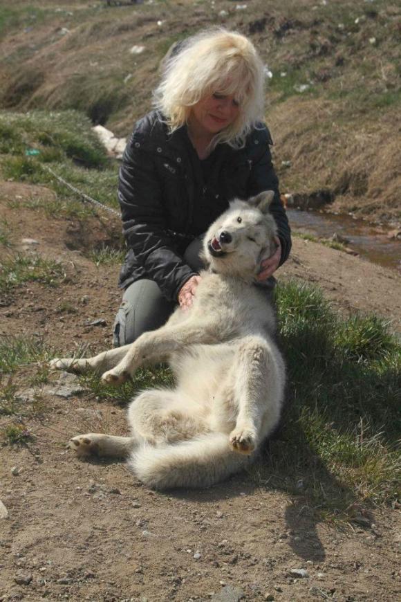 Marion hat ihr Herz an sie verloren, Tassilaq und Kummiut in Ostgrönland