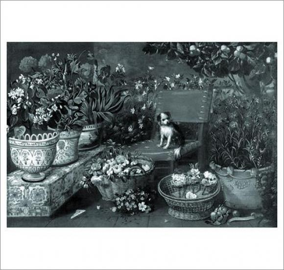 Marta Klonowska, Lion dog meets garden dog, Foto lorch+seidel