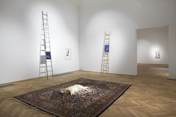 Nina Beier, Tragedy, 2011, Foto Kunsthal Chartlottenborg