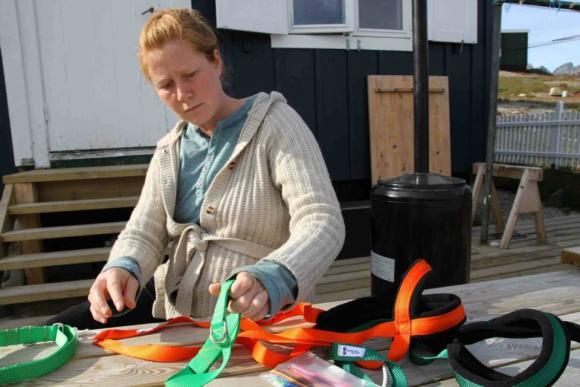 Gepolsterte Brustgeschirre statt blutig scheuernder Seile werden hergestellt, Fo