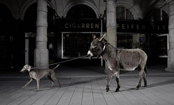 Follow Me, 2013 © Christian Lohfink
