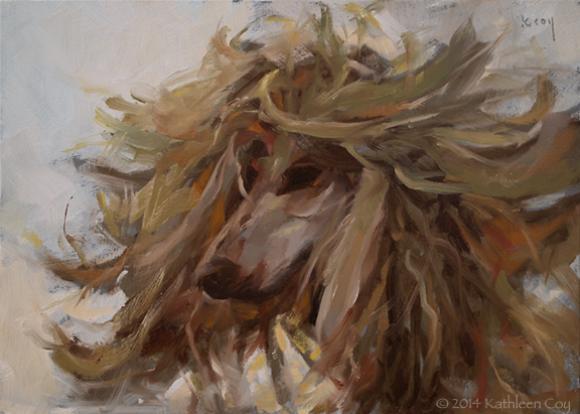Afghan Hound © Kathleen Coy