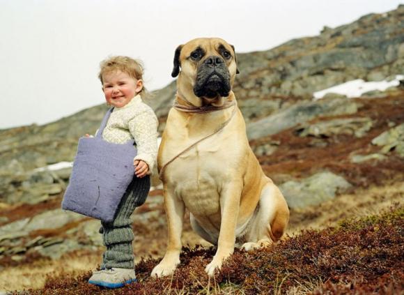 Arnold Corey, Escaping Finnmark, 2008