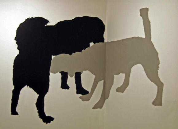 Dogs On Wall © Colleen