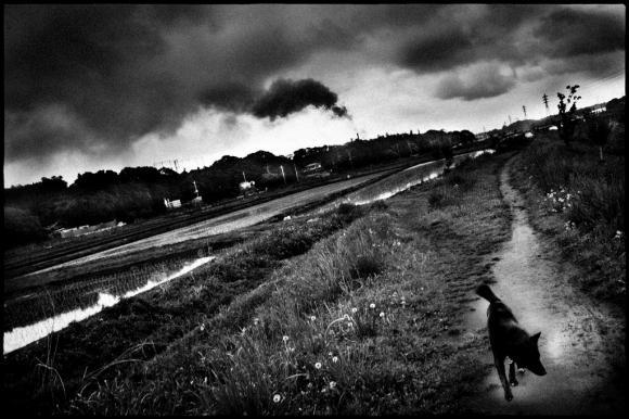 Man and dog © Hajime Kimura