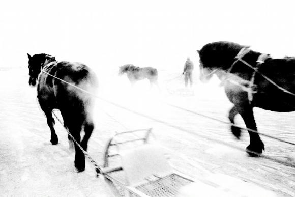 Tracks © Hajime Kimura