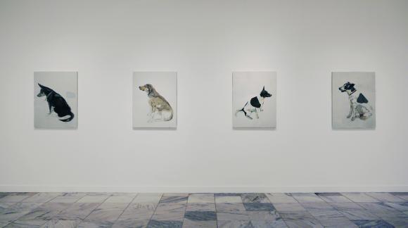 Rafael Zavagli, Ausstellungsansicht