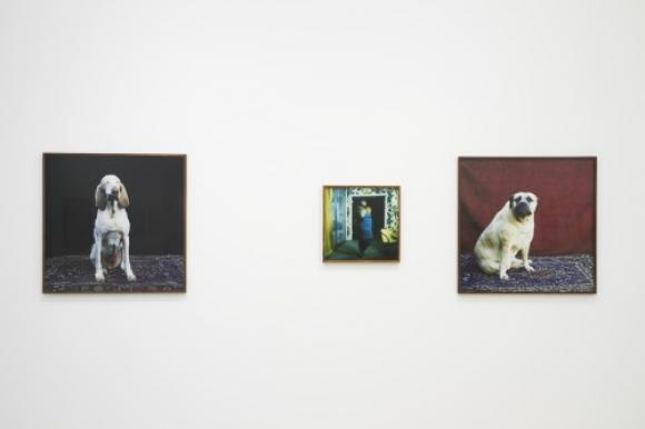 Ausstellungsansicht, Foto © Michael Kollmann