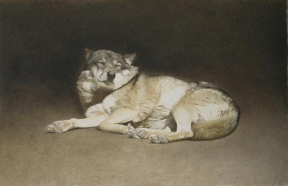 Marzio Tamer, Wolf 2012