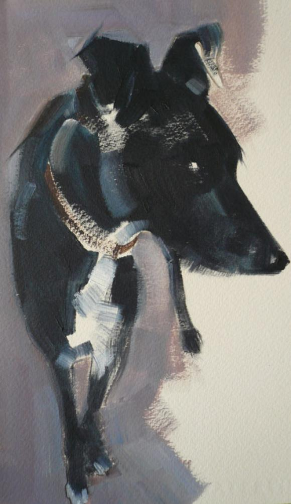 Black Dog © Sally Muir