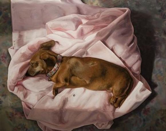 Blanket, 2009 © Raychael Stine