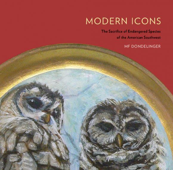 Buchcover Modern Icons © MF Dondelinger