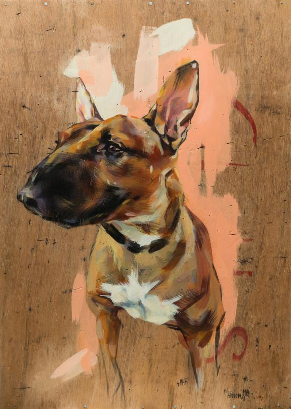 Bull Terrier, 2013 © Hannah Parr