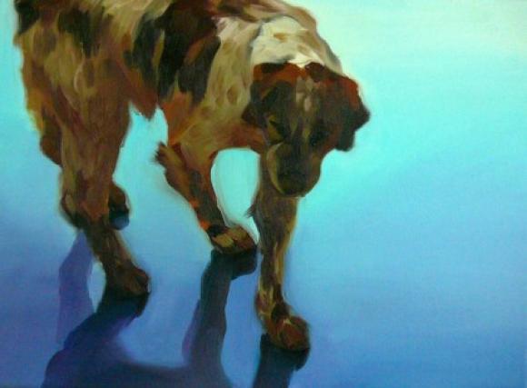 Bunter Hund 1, 2011 © Hannelore Kroll