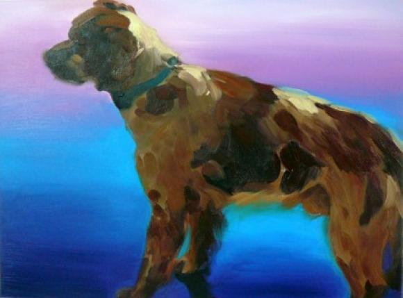 Bunter Hund 2, 2011 © Hannelore Kroll