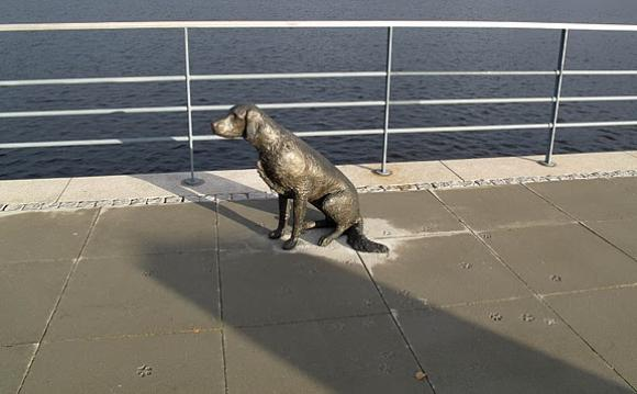 Linnéa Jörpelan - Bronzehund