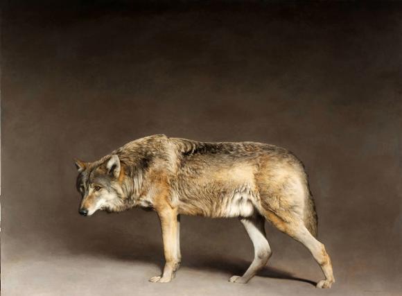 Marzio Tamer, Wolf 2015
