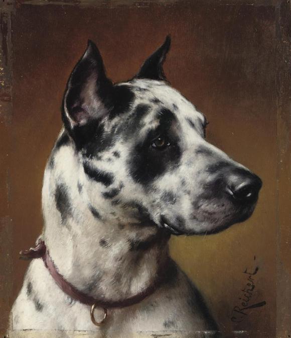 Carl Reichert, Dogge