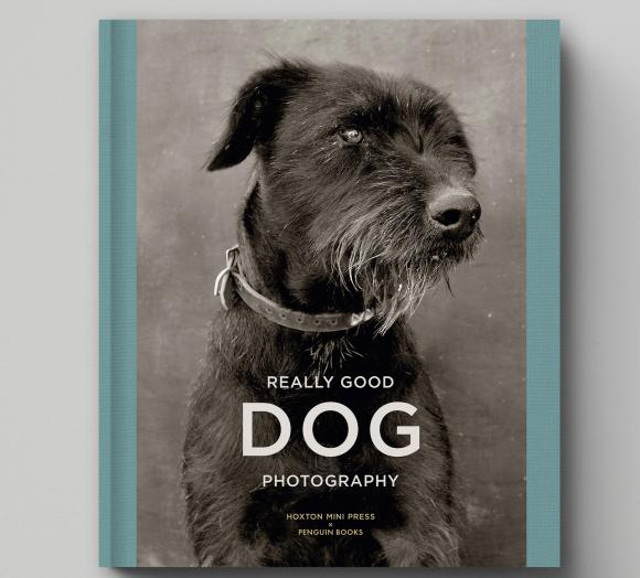 Really Good Dog Photography © Hoxton Mini Press