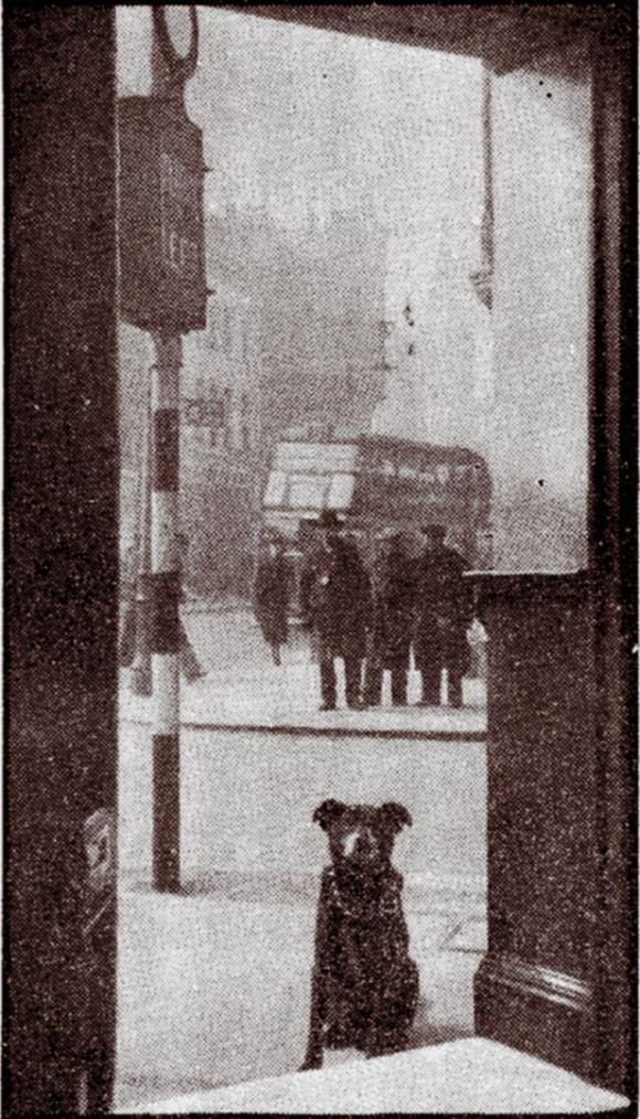 Bloomsbury Bob, 1938