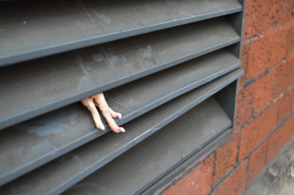Dan Witz, Empty the Cages 6, Foto: PETA