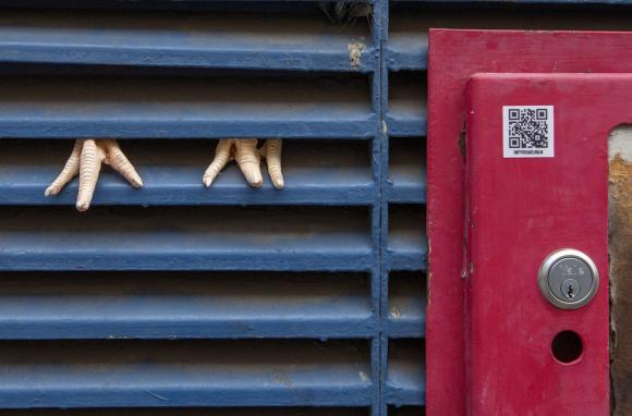 Dan Witz, Empty the Cages 3, Foto: PETA
