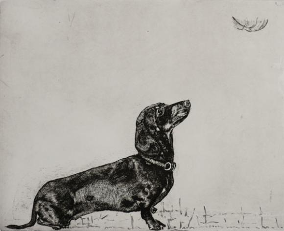 Daxie and Feather © Guy Allen
