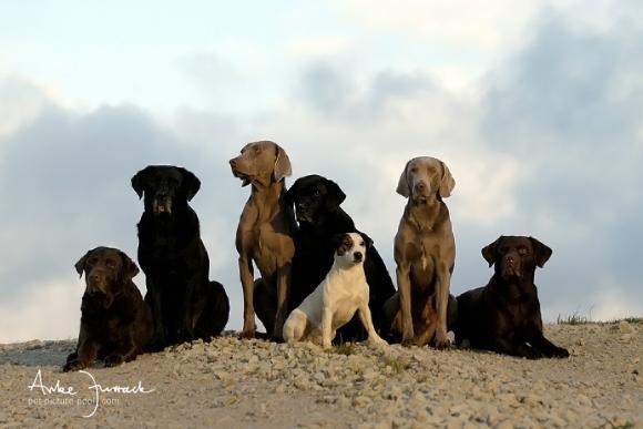 Die Jungs © Anke Jurrack