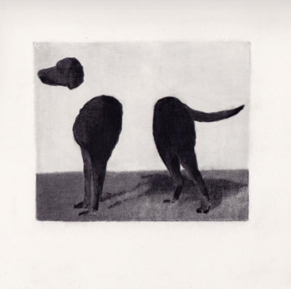 Dog, 2012 © Ryan Mrozowski