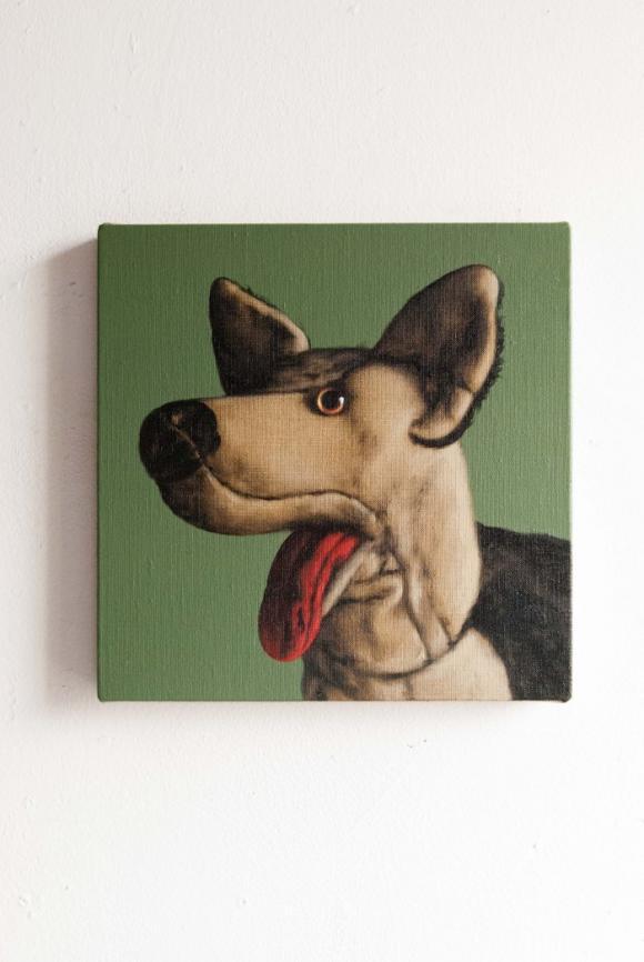 Schäferhund © Peter Jones