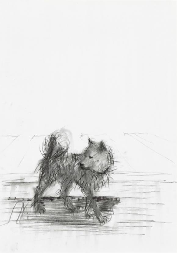 Dog, 2019 © Sabine Moritz