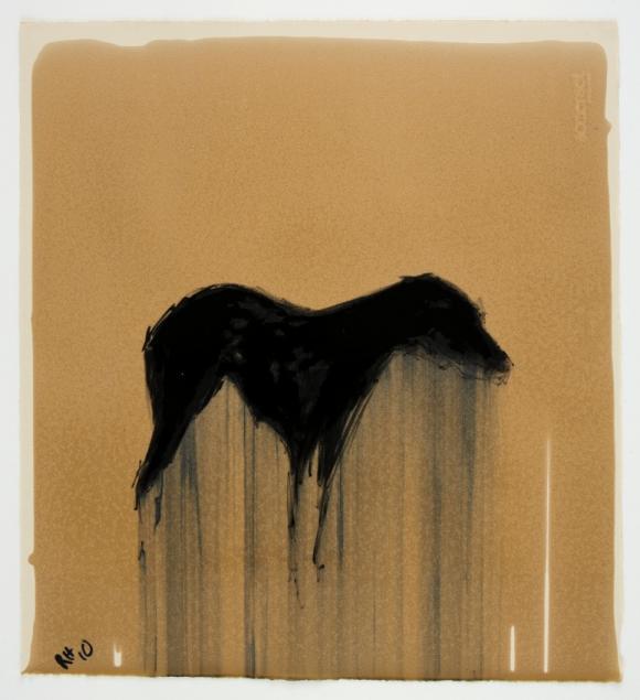 Rachel Howard, Dog, Oil on Paper, Foto © isinner