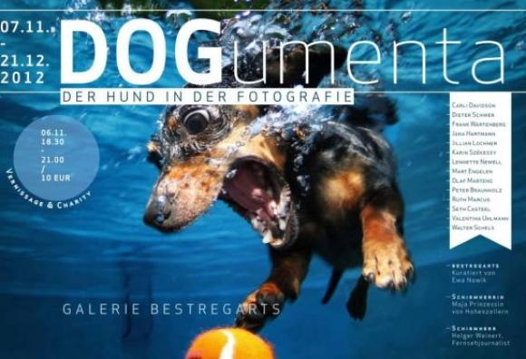 Plakat DOGumenta