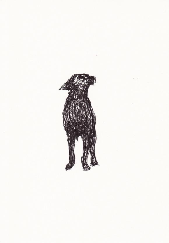 Doodle Dog © Rodney van den Beemd