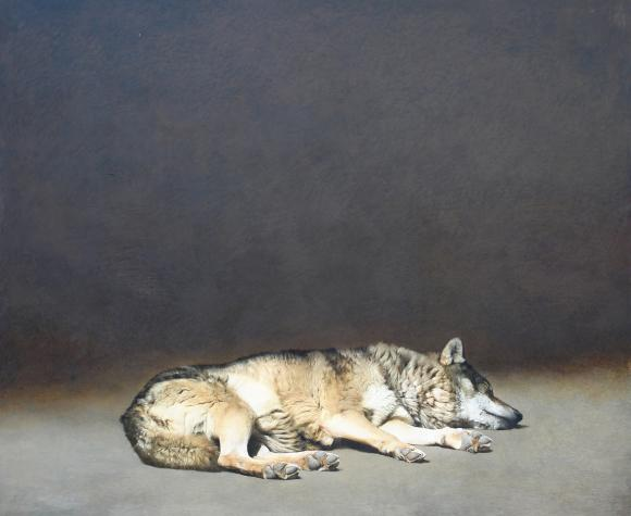 Marzio Tamer, Schlafender Wolf, 2008