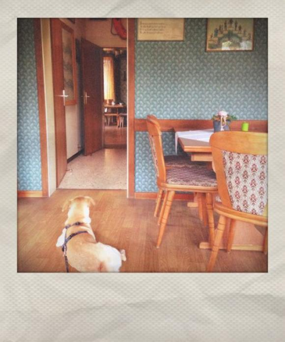 ed kienholz »roxy's« © herr penschuck