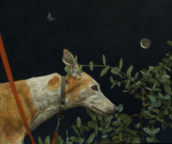 Fabian Jean, Dog and Moon