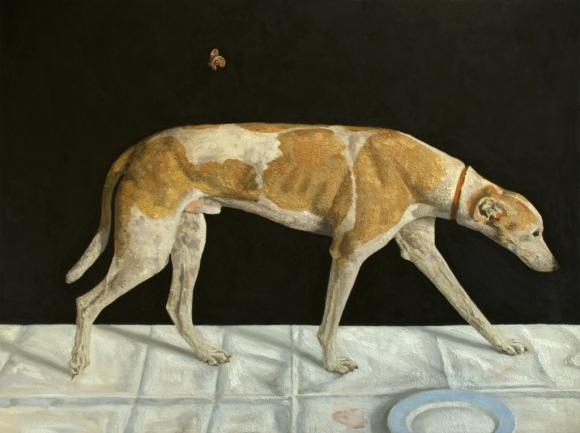 Fabian Jean, Dog and Moth