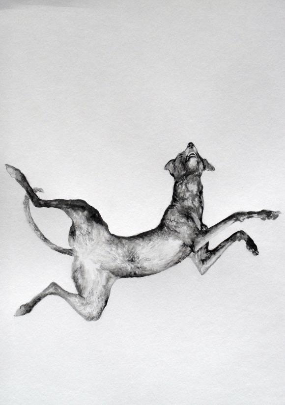 Falling dog © Karl de Vrommen