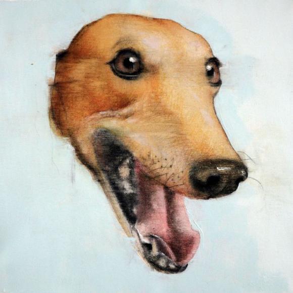 Fantastic Dog! 3 © Dario Moschetta