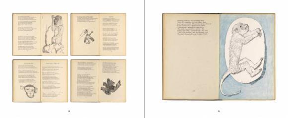 Doppelseite 38/39 aus Lucian Freud und das Tier