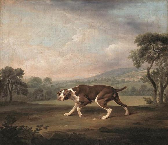 George Stubbs, The Pointer, 1766