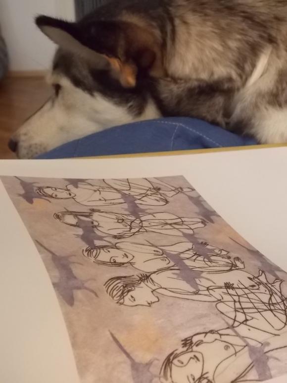 Die Hunde ziehen vorbei, Hedy schläft © Petra Hartl