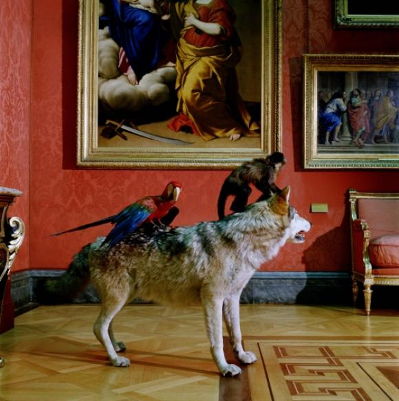 Karen Knorr, Higt Art Life after the Deluge