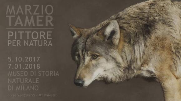 Ausstellungsplakat Marzio Tamer